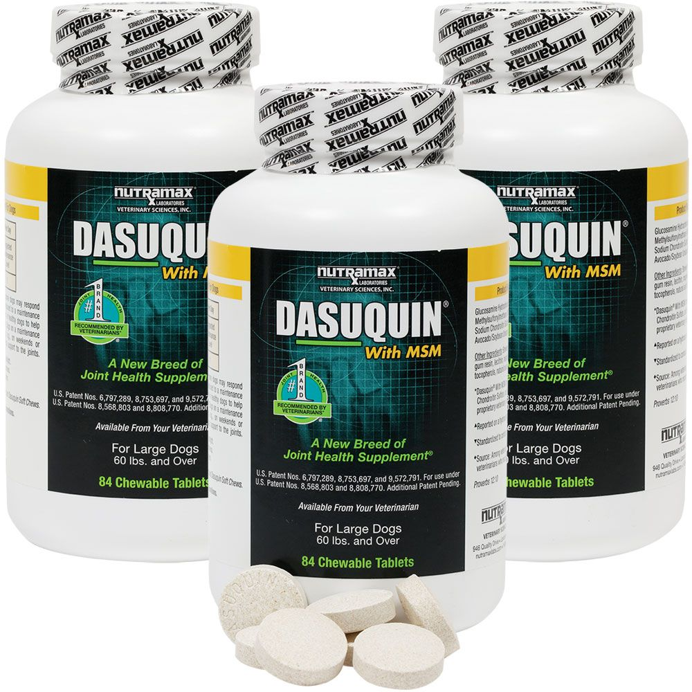 DASUQUIN-FOR-LARGE-DOGS-60-LBS-OVER-WITH-MSM-3-PACK-252-CHEWS