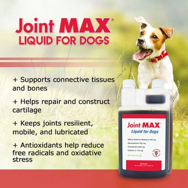 JOINTMAXLIQUID1