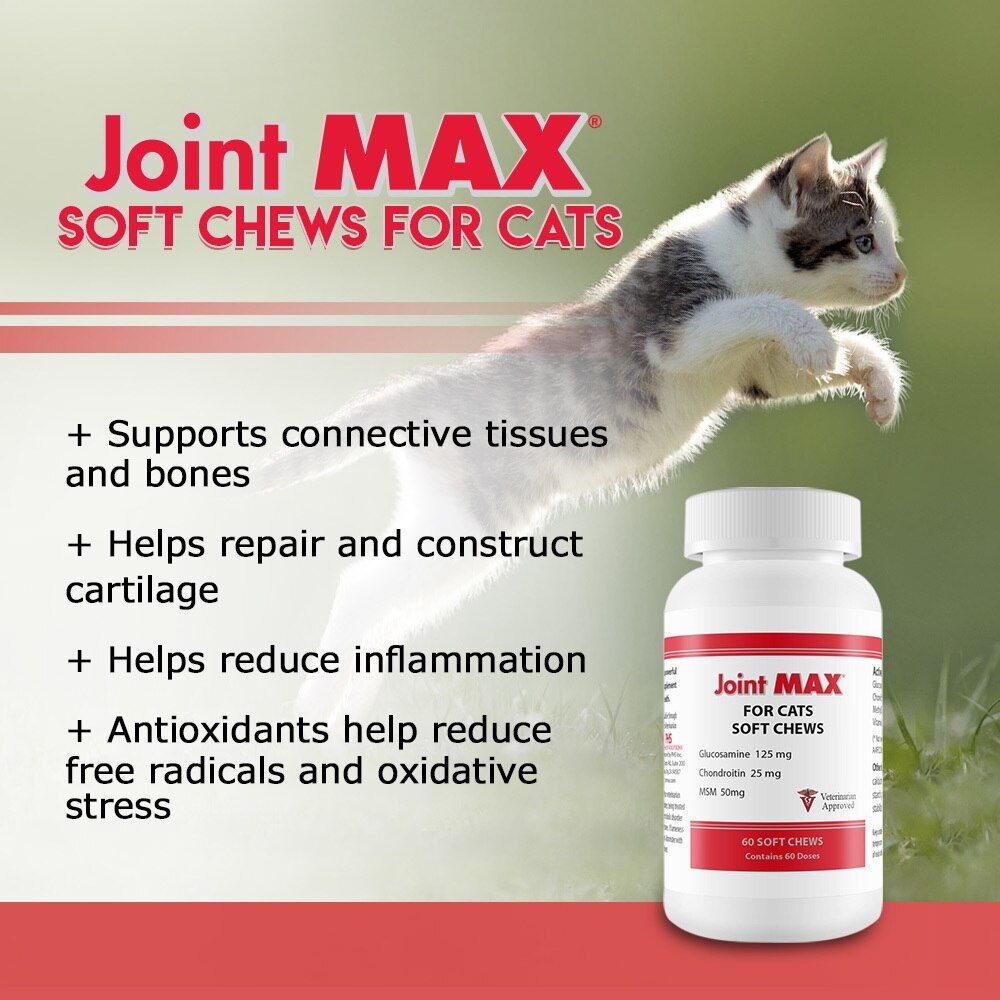 3-PACK-JOINT-MAX-SOFT-CHEWS-FOR-CATS-180-SOFT-CHEWS