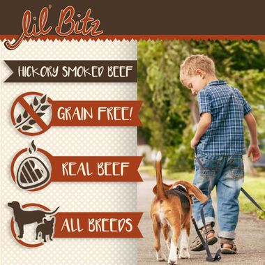 LIL-BITZ-HICKORY-BEEF-TREATS-3-PACK
