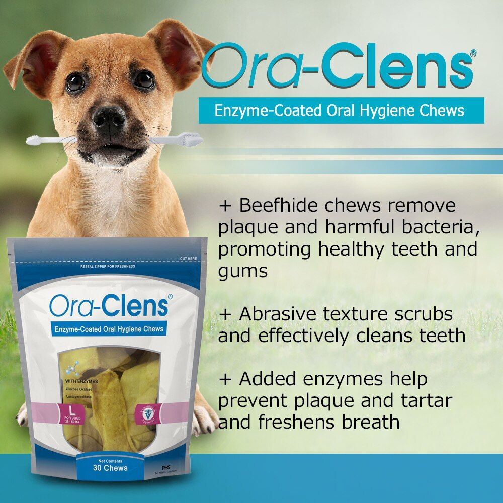 3-PACK-ORA-CLENS-ORAL-HYGIENE-CHEWS-LARGE-90-CHEWS