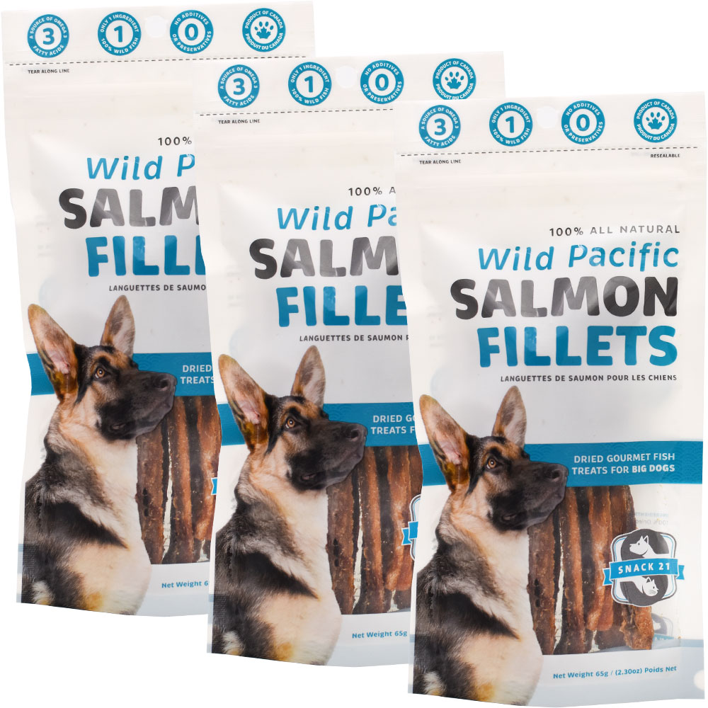 Snack 21 Wild Pacific Salmon Fillets for Big Dogs 3-PACK (195 g) im test