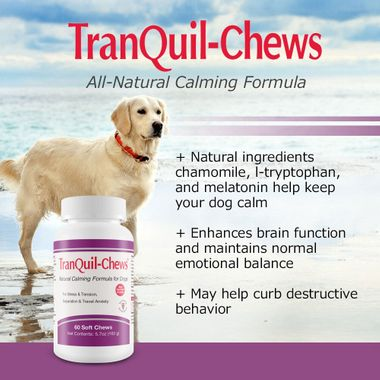 3-PACKS-TRANQUIL-CHEWS-FOR-DOGS-180-SOFT-CHEWS