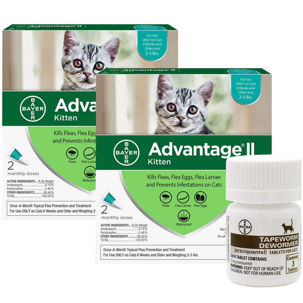 4 MONTH Advantage II Flea Control for Kittens (2-5 lbs) + Tapeworm Dewormer for Cats (3 Tablets) im test