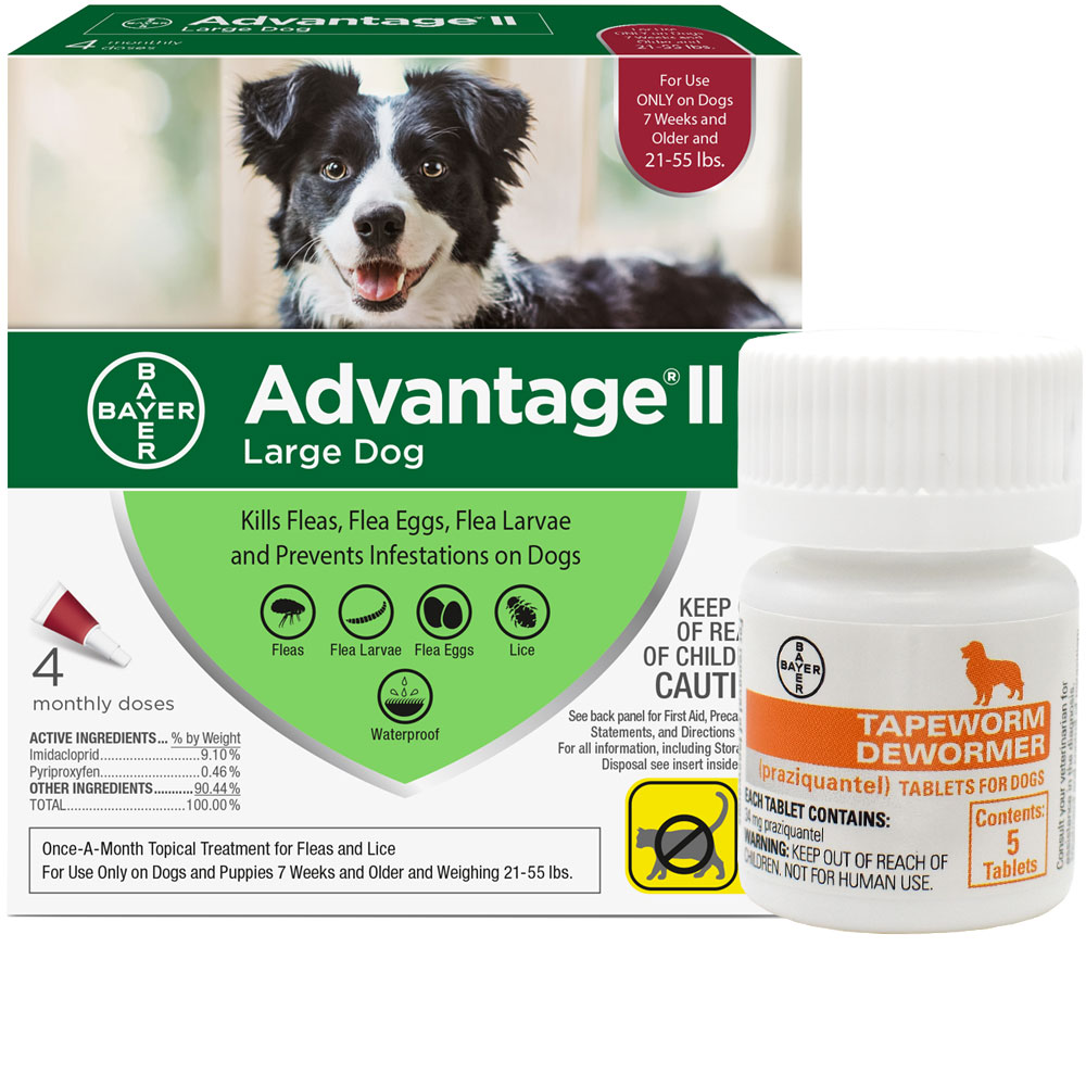 4 MONTH Advantage II Flea Control for Large Dogs (21-55 lbs) + Tapeworm Dewormer for Dogs (5 Tablets) im test