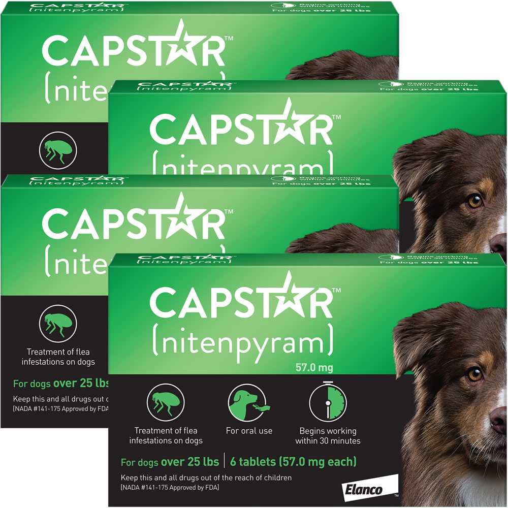 Capstar Flea Control for Dogs Over 25 lbs (24 Tablets) im test