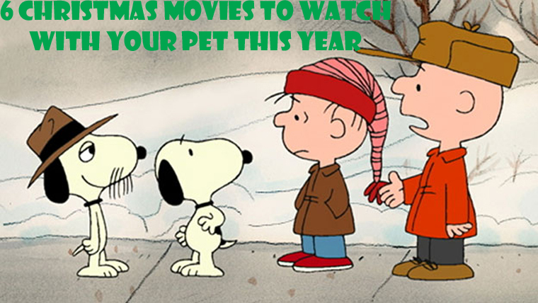 6 Christmas Movies To Watch with Your Pet This Holiday