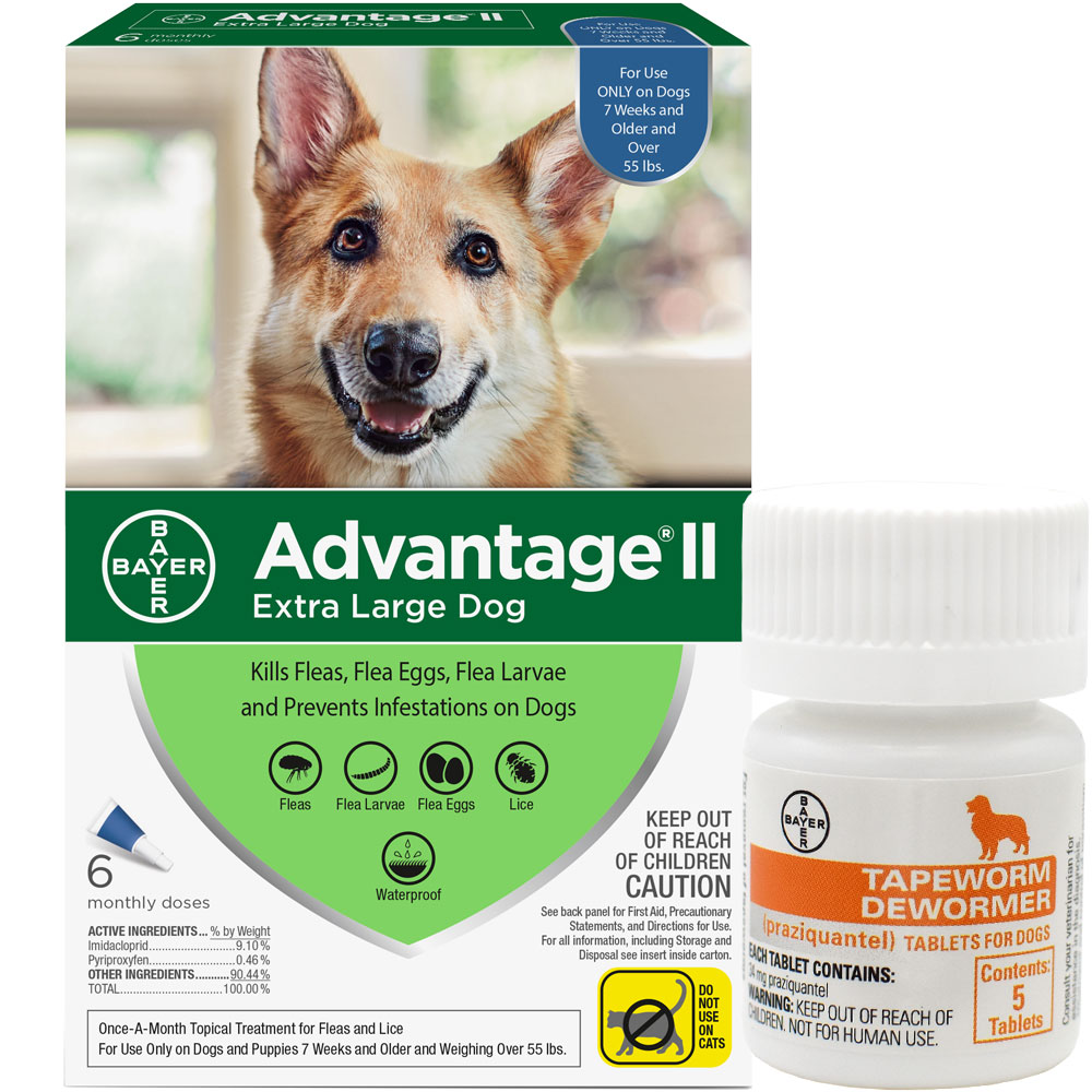 6 MONTH Advantage II Flea Control for Extra Large Dogs (Over 55 lbs) + Tapeworm Dewormer for Dogs (5 Tablets) im test