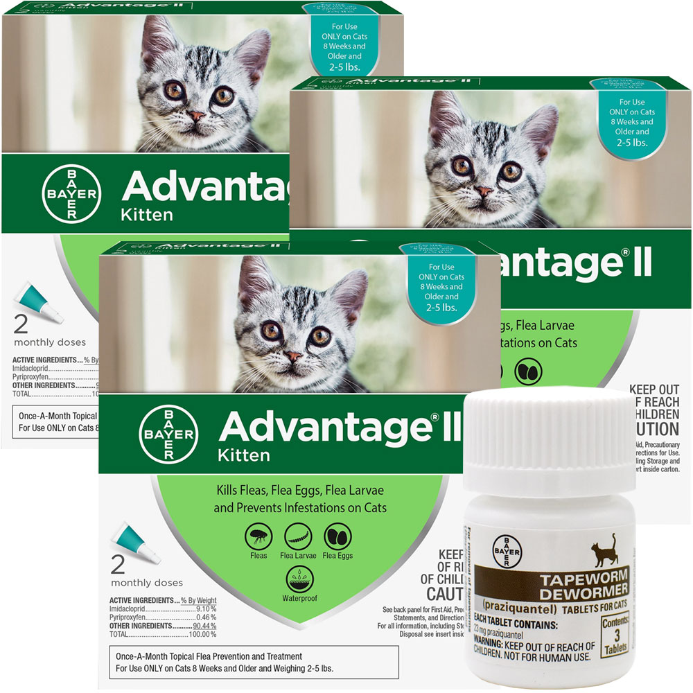 6-MONTH-ADVANTAGE-II-KITTENS-TAPEWORM