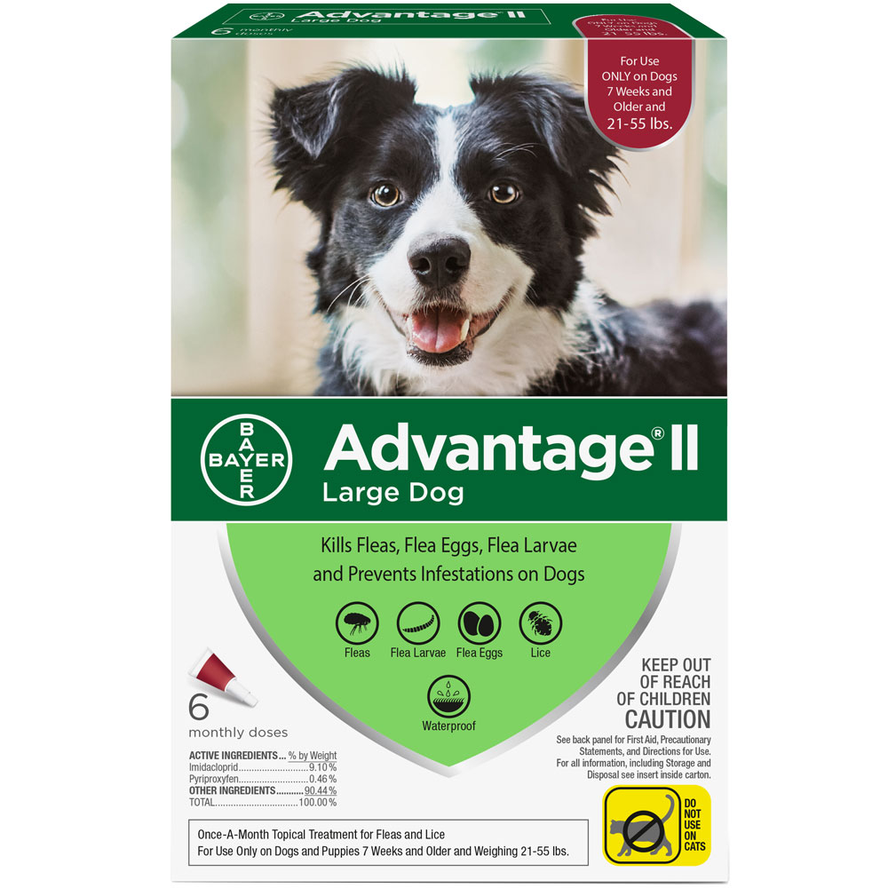 6 MONTH Advantage II Flea Control for Large Dogs (21-55 lbs) im test