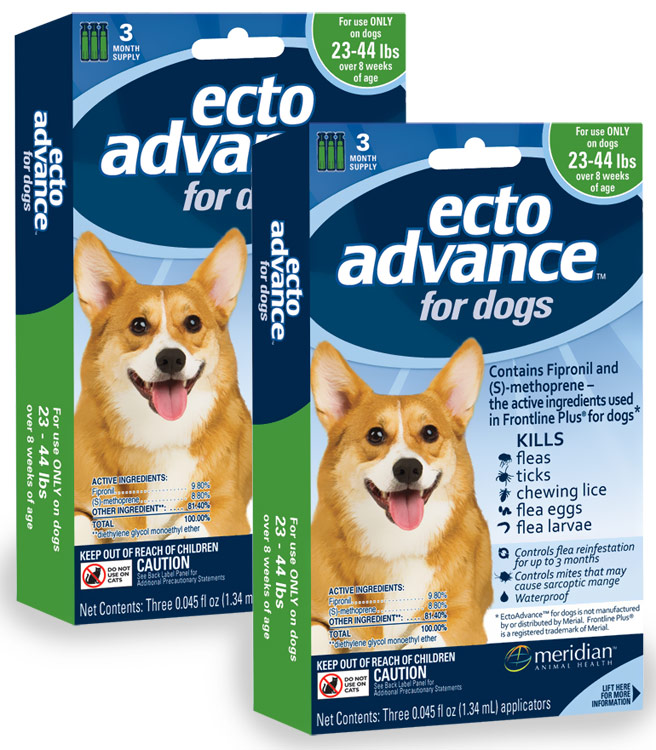 6 MONTH EctoAdvance for Dogs 23-44 lbs
