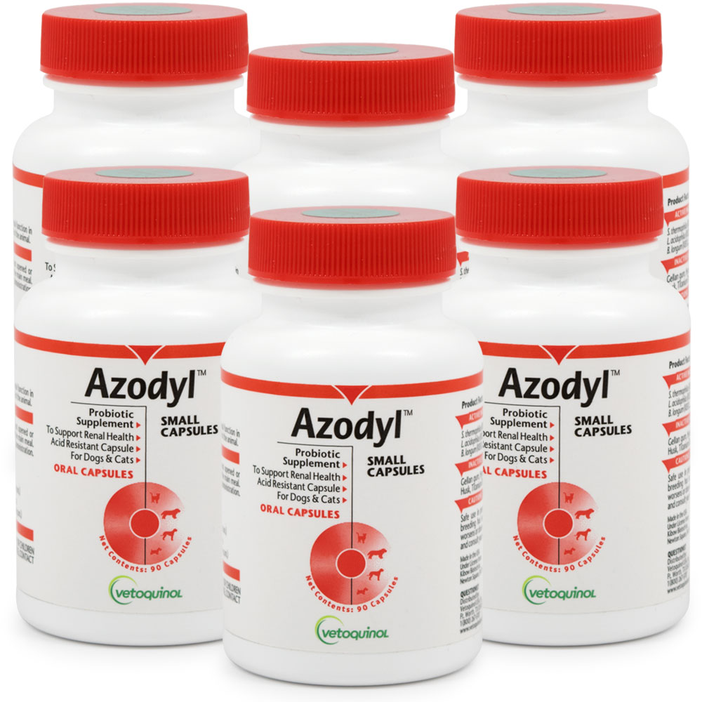 6-PACK Azodyl Small Caps (540 count) im test