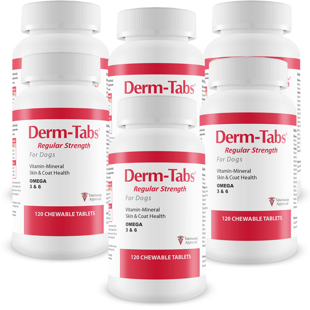 Image of 6-PACK Derm-Tabs Regular Strength for Dogs (720 Chewable Tablets)
