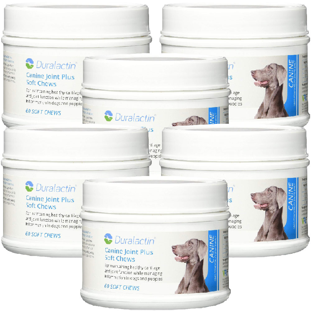6-PACK Duralactin Canine Joint Plus Soft Chews (360 count)