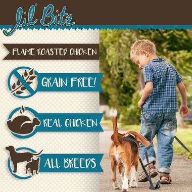 LIL-BITZ-FLAME-CHICKEN-TREATS-6PACK