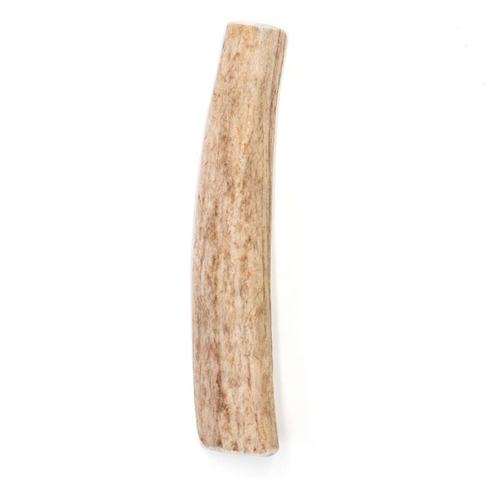 SPIZZLES-ELK-ANTLER-DOG-CHEW-CENTER-CUT-SMALL-6PACK