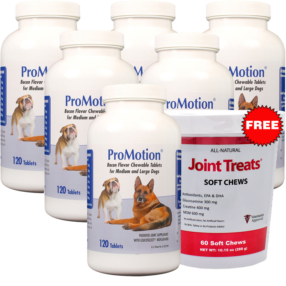 ProMotion for M/L Dogs 6-Pack (720 tablets) + FREE Joint Treats im test