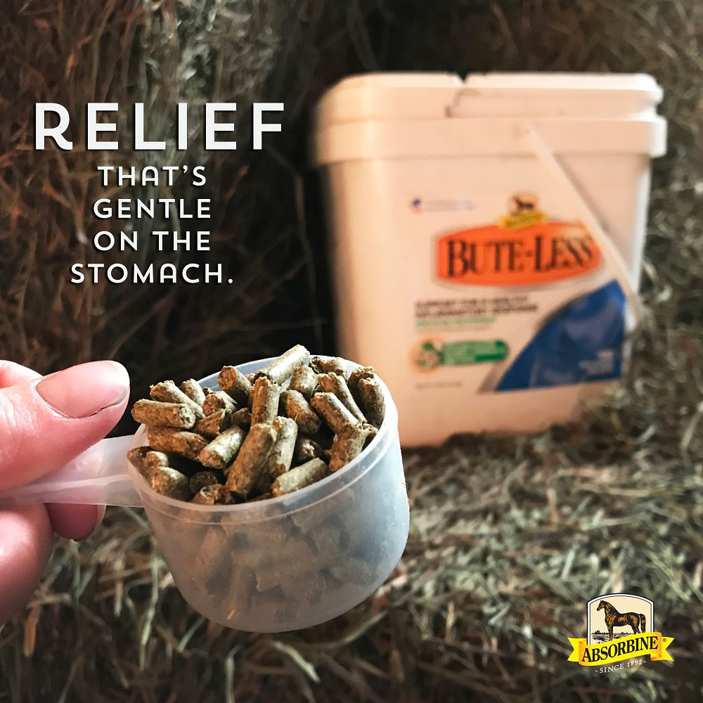 ABSORBINE-BUTE-LESS-COMFORT-RECOVERY-SUPPORT-PELLETS-5LB