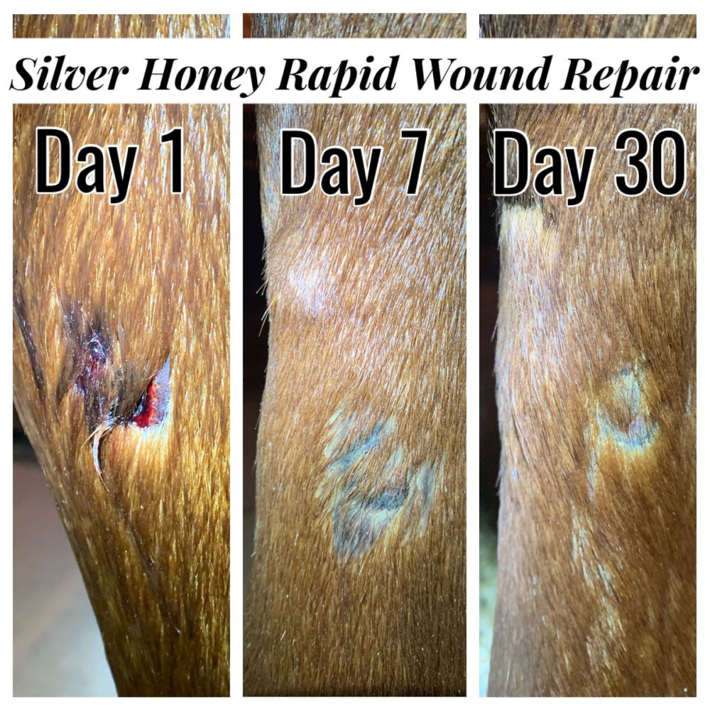 ABSORBINE-SILVER-HONEY-RAPID-WOUND-REPAIR-OINTMENT-2-OZ-TUBE