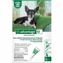 Advantage for Dogs