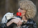 After Living Life in a Puppy Mill, This Blind Dog Has Found a Loving Forever Home