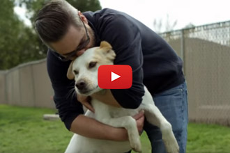 After Serving Our Country, This Man Found Hope And Happiness Through His Dog