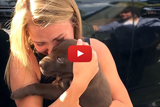 All She Wanted Was A Puppy. What She Got, Was So Much More!