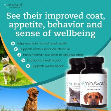 Two bottles of AminAvast for dogs and the other for cats next to list of benefits