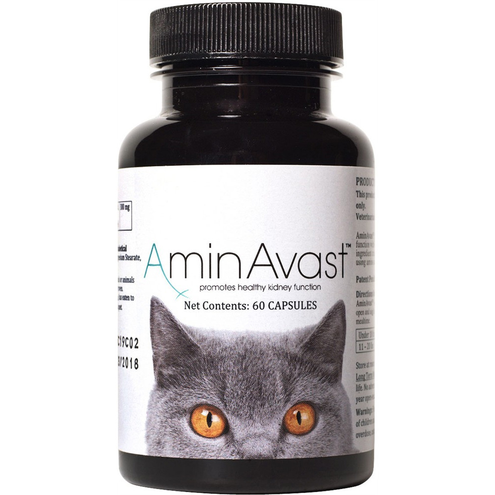 AMINAVAST-KIDNEY-SUPPORT-CATS-60-CAPSULES