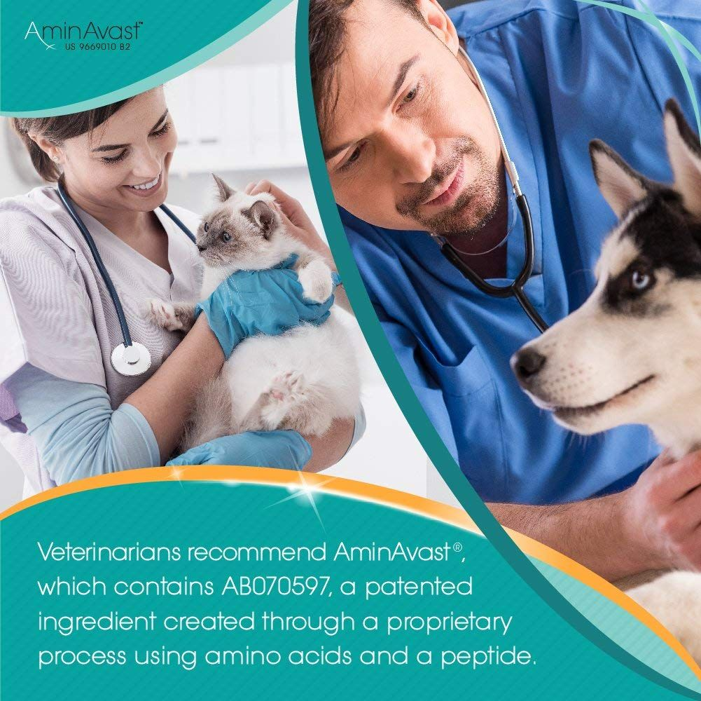 Vets with cats and dogs next to quote highlighting an ingredient recommended by vets that is created through a proprietary process