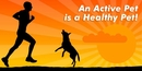 An Active Pet is a Healthy Pet