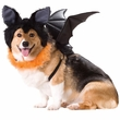 Animal Planet Bat Dog Costume - X-Small
