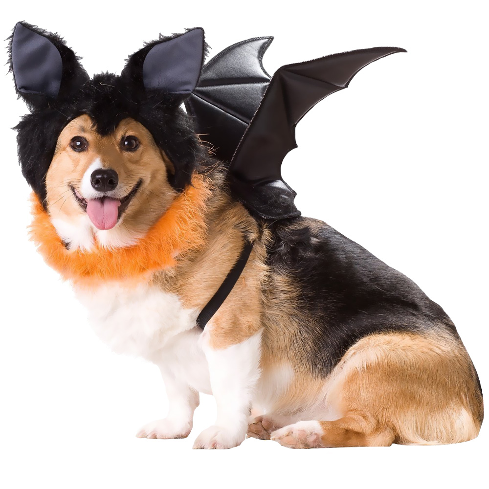 ANIMAL-PLANET-BAT-DOG-COSTUME-X-SMALL
