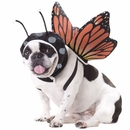 Animal Planet Butterfly Dog Costume - Large