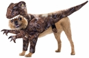 Raptor Dog Costume (Small)