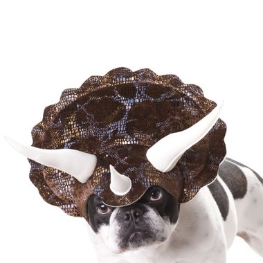 Finest Pet Halloween Costumes for Canine 11