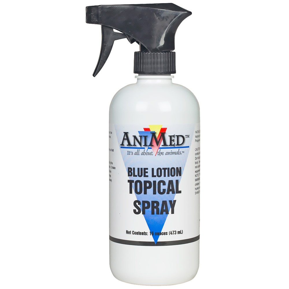 ANIMED-BLUE-LOTION