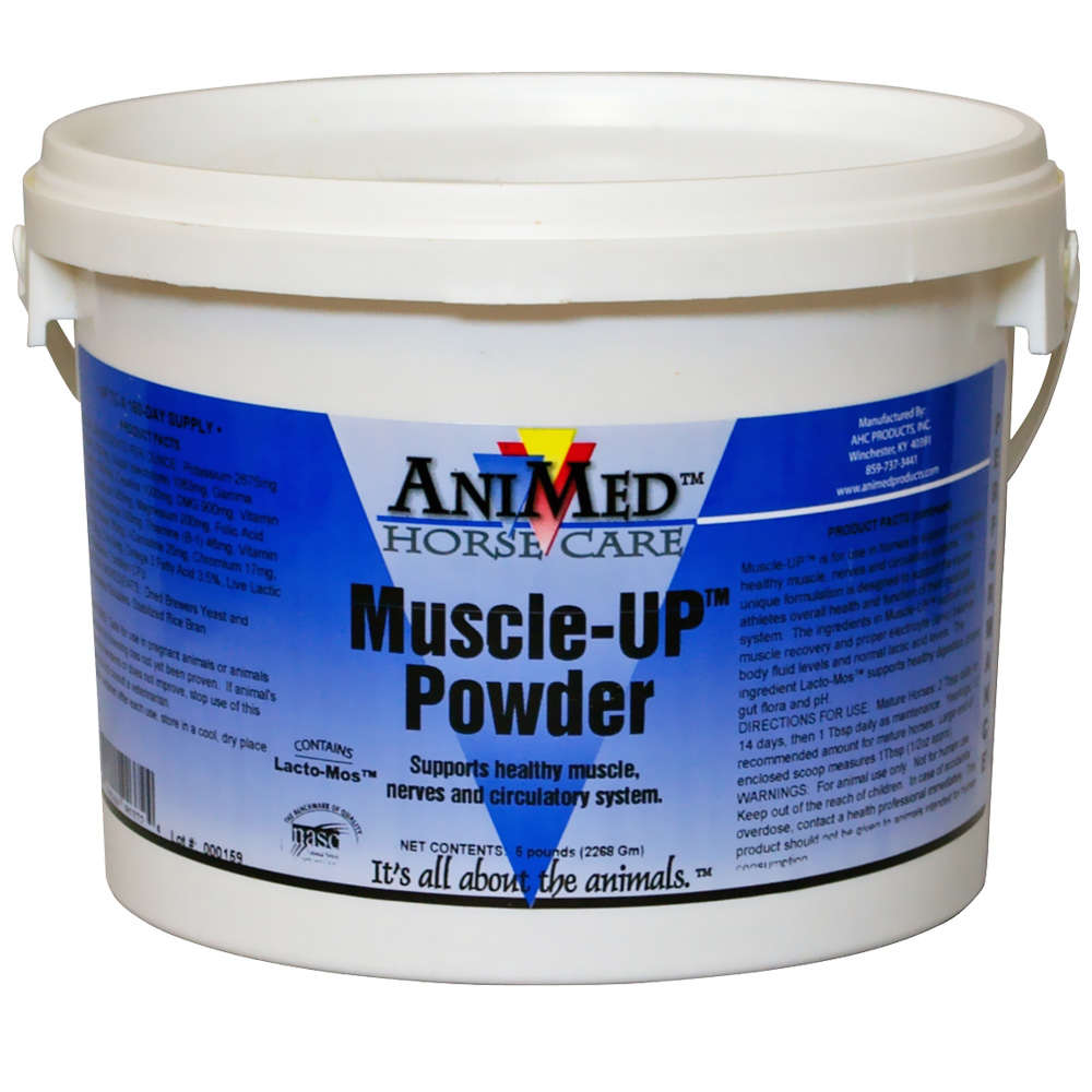 ANIMED-MUSCLE-UP-POWDER-5-LB