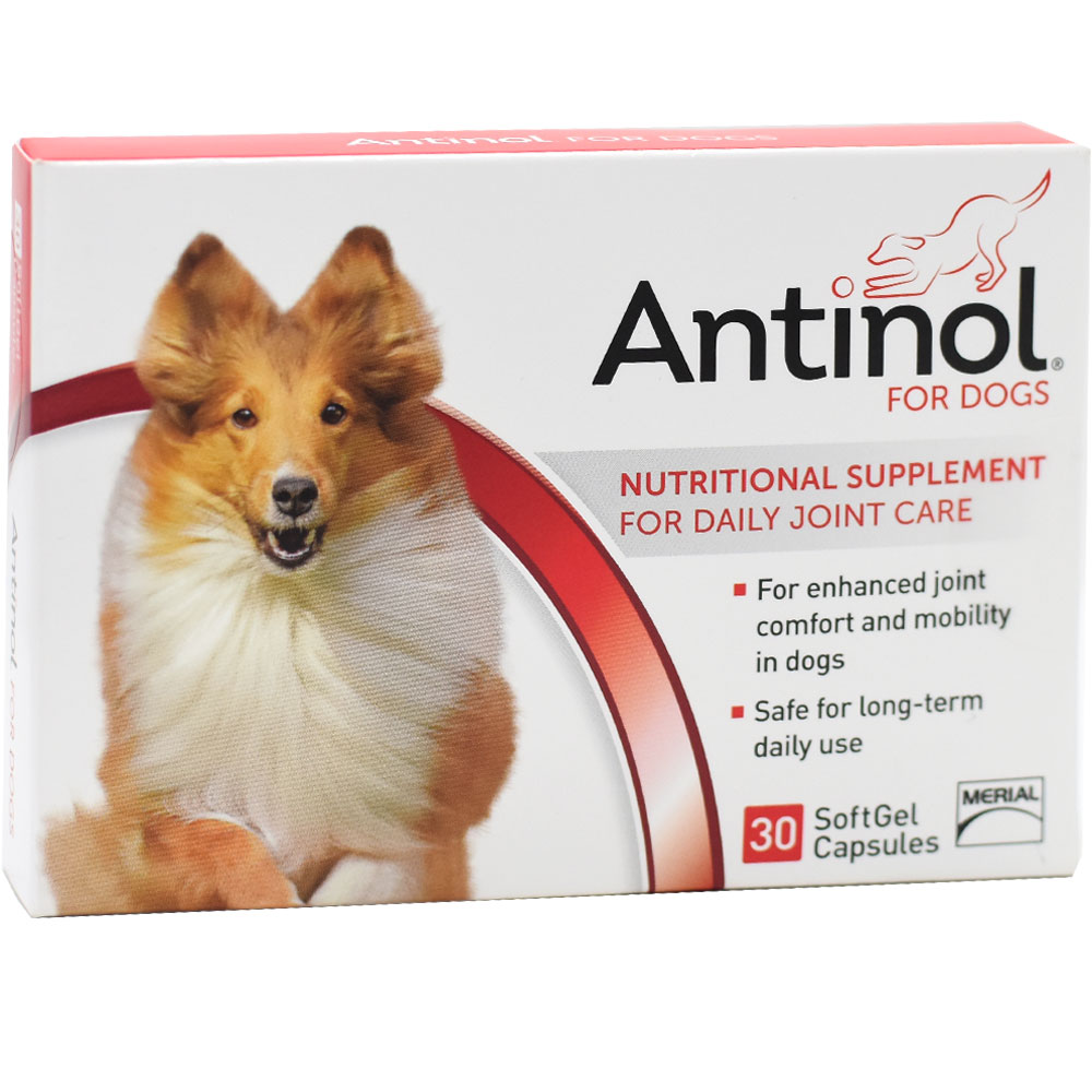 ANTINOL-DAILY-JOINT-CARE-FOR-DOGS
