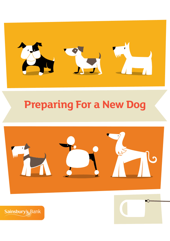 Are You Ready For A New Dog?