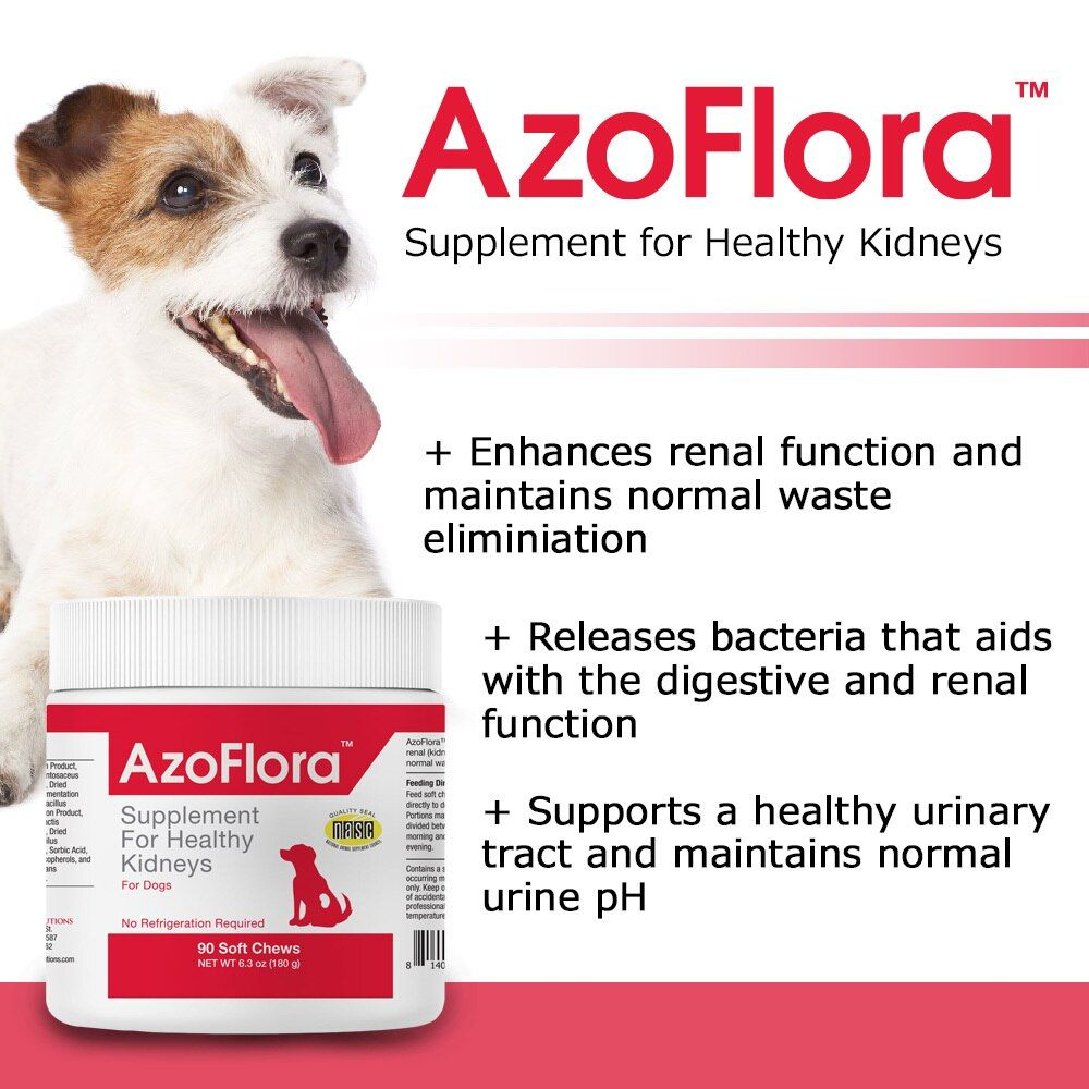 AZOFLORA-KIDNEY-SUPPORT-90-SOFT-CHEWS