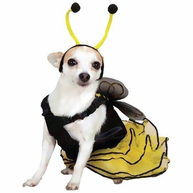 CASUAL-CANINE-BEE-MINE-COSTUME-YELLOW-LARGE