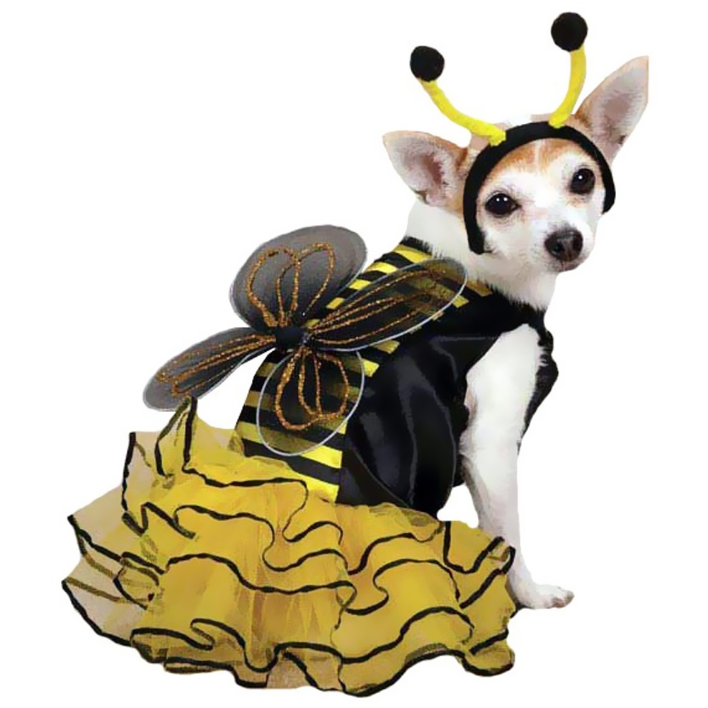 CASUAL-CANINE-BEE-MINE-COSTUME-YELLOW-MEDIUM