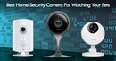 Best Home Security Cameras For Pets