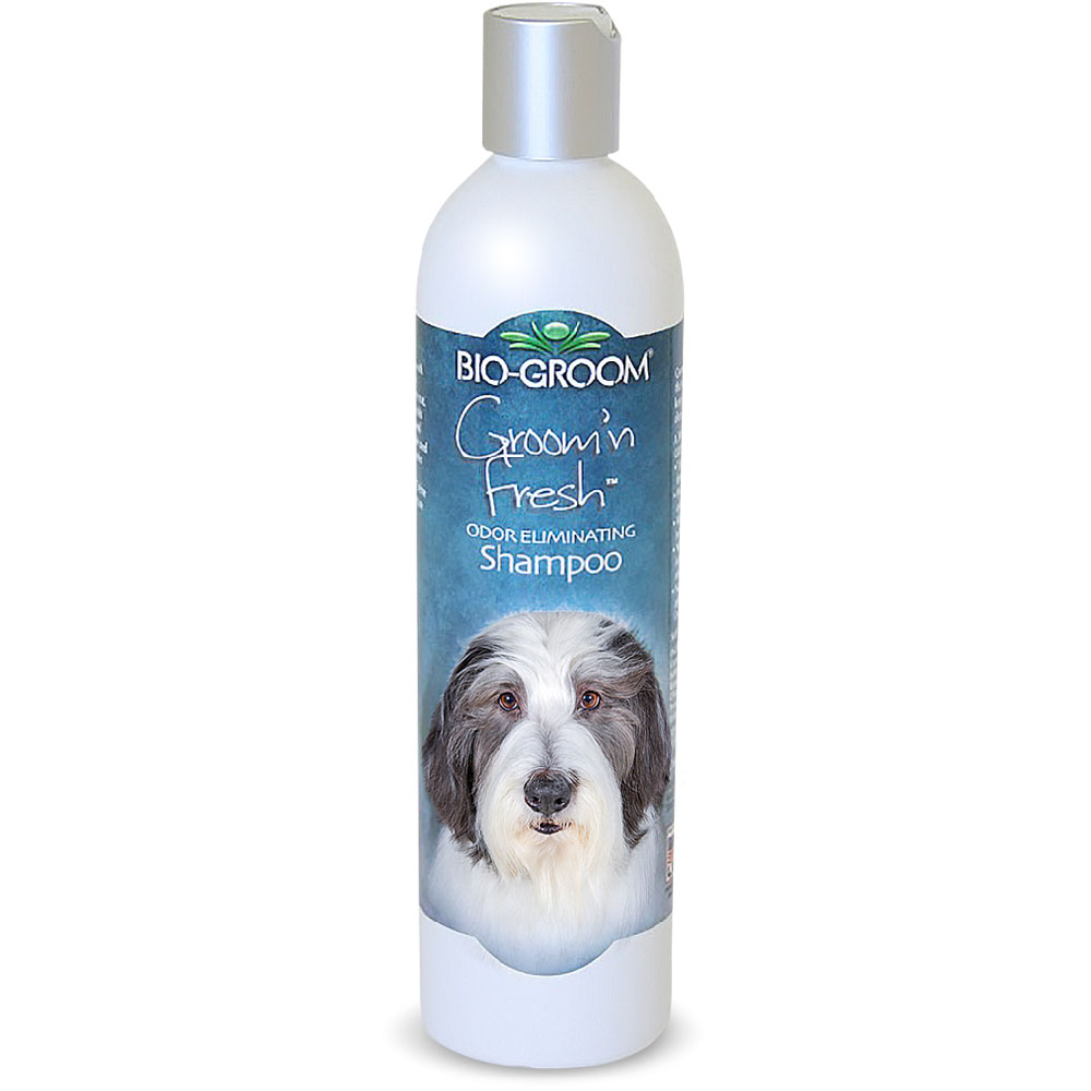 Image of Bio-Groom Groom 'N Fresh Shampoo (12 fl oz)