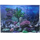 "BioBubble 3D Background Coral Reef 20 Gallons (24"" x 12"")"