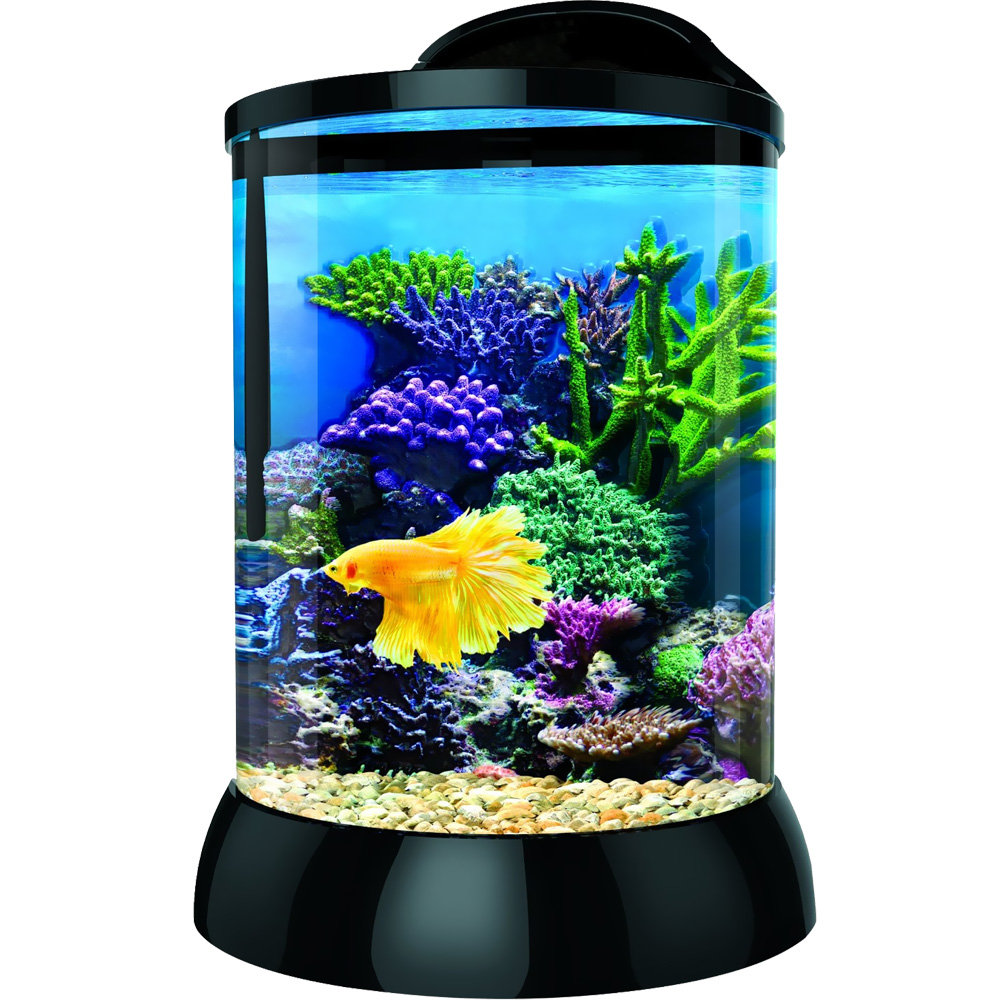 BIOBUBBLE-3D-BACKGROUND-AQUATERRA-1-GALLON-BLACK