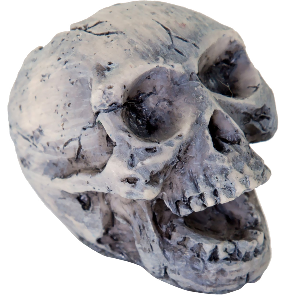 BIOBUBBLE-DECORATIVE-HUMAN-SKULL-SMALL