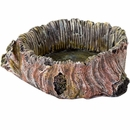 "BioBubble Decorative Stump Bowl - Large (3.75"" x 3.75"" x 1.35"")"