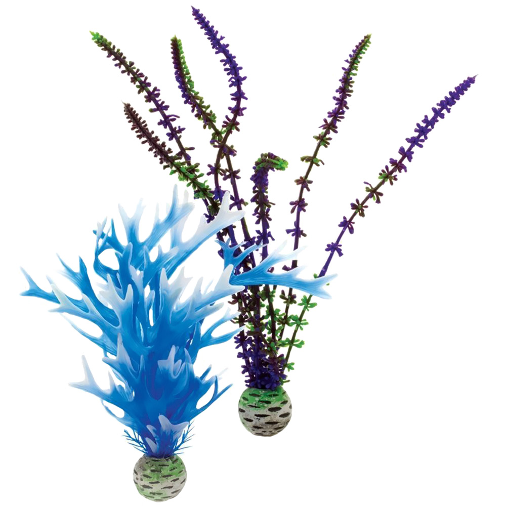 Image of Biorb Easy Plant Blue/Purple Pack Medium (2 plants)
